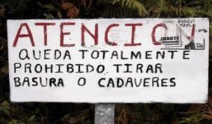 CARTELES DIVERTIDOS - CADAVERES
